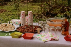 Tropical Party_11